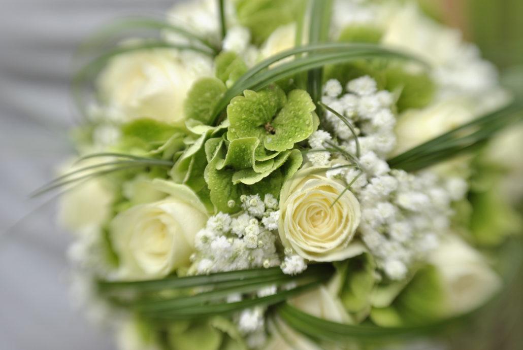 Ortensie Verdi Bouquet: Fioraio signorelli.